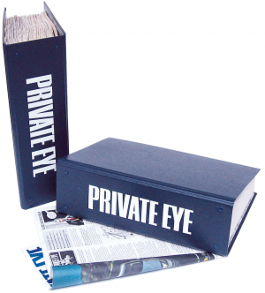 Private Eye Binder